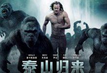 泰山归来:险战丛林 The Legend of Tarzan (2016)【第15部破解版4K蓝光原盘】