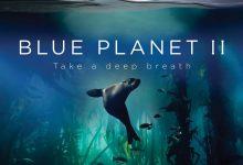 蓝色星球2 Blue Planet II (2017)【第247部破解版4K蓝光原盘】