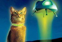 鬼马太空猫 The Cat from Outer Space (1978)