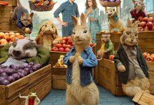 比得兔2:逃跑计划 Peter Rabbit 2: The Runaway (2021)【第992部破解版4K蓝光原盘】