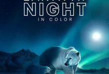 夜色中的地球 第二季 Earth at Night in Color Season 2 (2021)